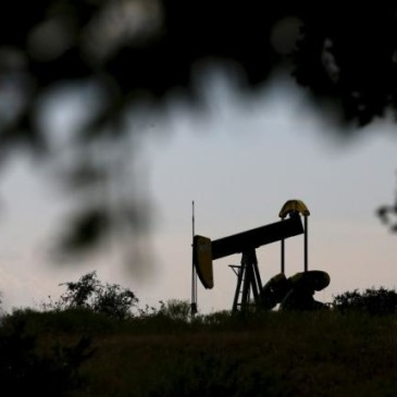 Ropa a fundamenty. Jak nisko możemy zejść?