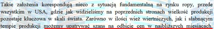 Fragment z 4 strony raportu
